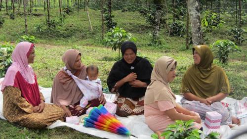 Nursery Training Program (Pantan Tengah Village)